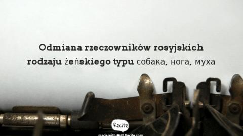 Odmiana rzeczowników rosyjskich rodzaju żeńskiego typu собака, нога, муха