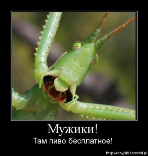 Demotywatory ru część 1