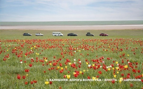 Top 11 najładniejszych dróg Rosji kurs języka rosyjskiego online